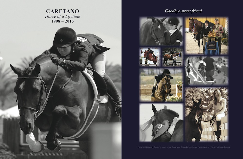 Caretano-spread-Chronicle-2015-site